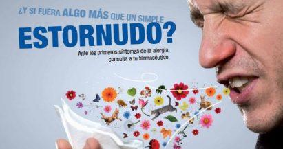 """El Consejo General lanza la Campaña """"Más que un estornudo"""""""