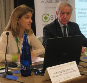 Arancha Bengoechea, socia de Landwell- PricewaterhouseCoopers, en su intervención en las Jornadas